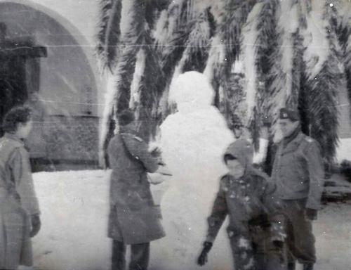 Snowstorm-Tlemcen-Hansen-Vinsant-McGaulley-Weiner
